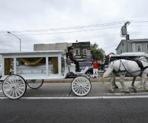 d'aja robinson horse carriage