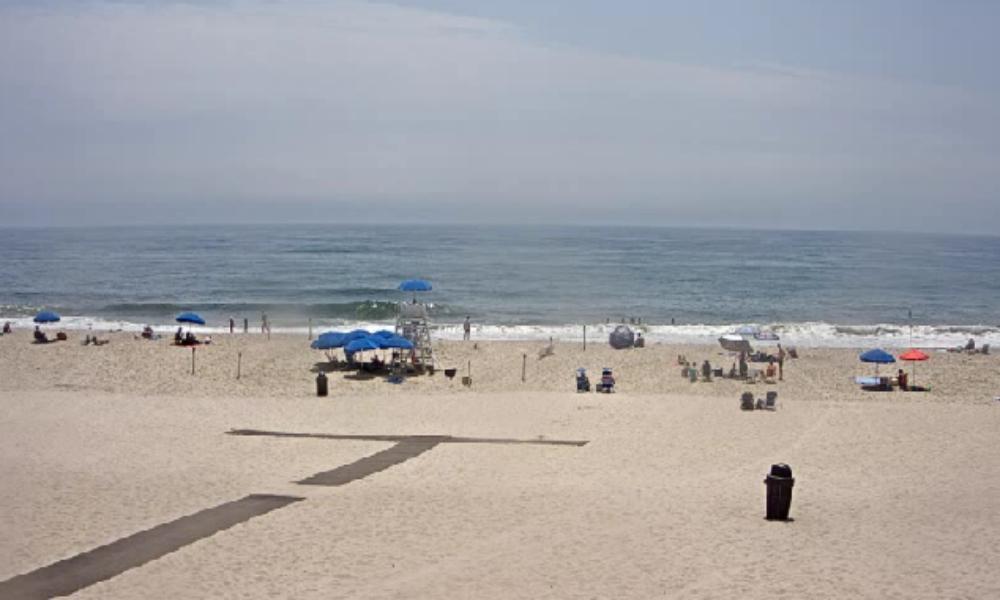 (Image: www.Hamptons.com)